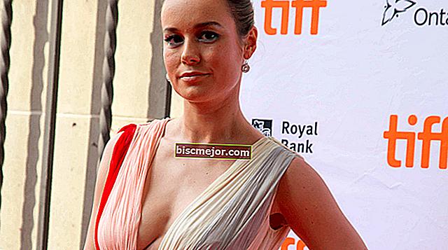 Brie Larsoni elulugu